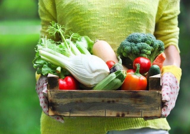Come conservare frutta e verdura: il decalogo indispensabile per i mesi caldi