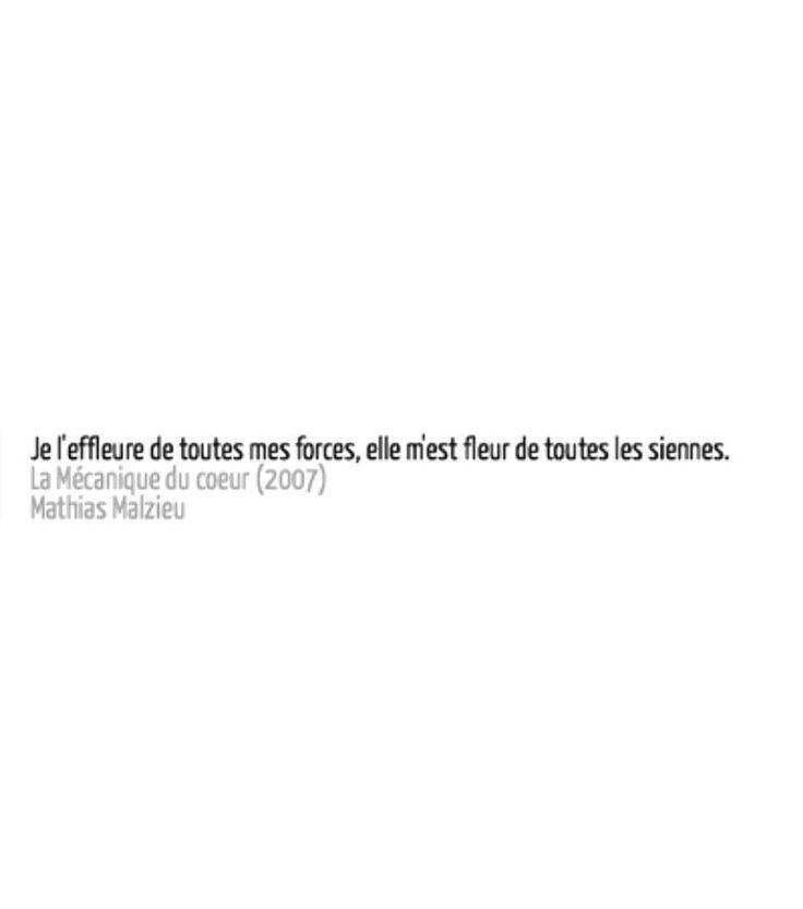 Je l'effleure de toutes mes forces, elle m'est fleur de toutes les siennes. - Mathias Malzieu
