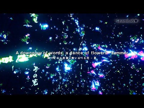 A downpour of words, a dance of flowers – summer / 降りそそぐ言葉、舞いおりる花 – 夏 - teamLab★ YouTube