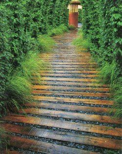 I like the way these boards are arranged to curve a bit, with gravel between them - the finish is nice too (looks almost wet) - not much info on site and I can't find another source, but I really REALLY like the look!  ********************************************   TheBestDressedGarden - #wood #garden #path t√