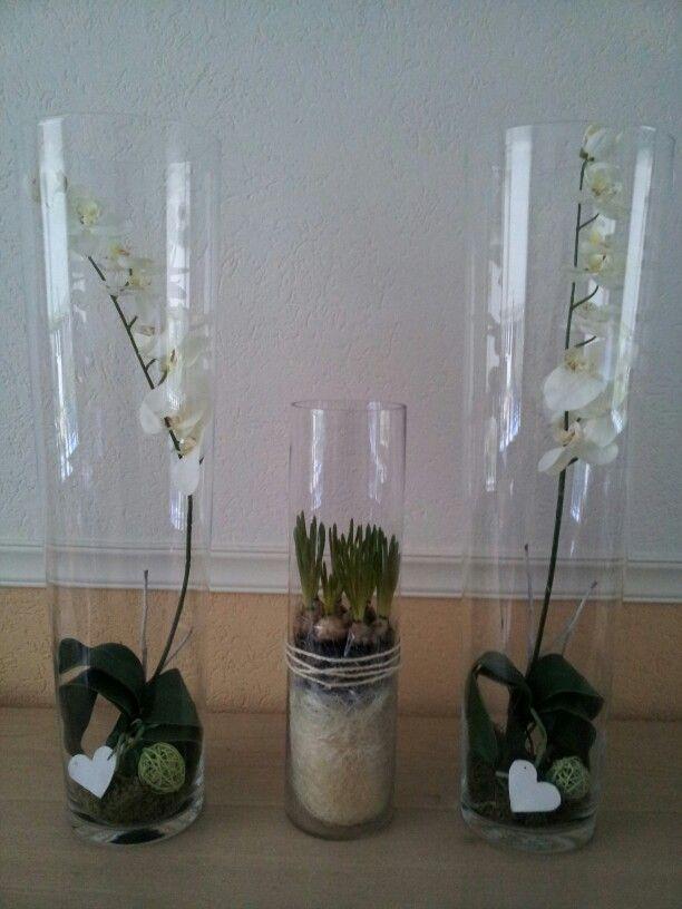 Lente creatie ...echte blauwe druifjes en kunst orchideeën !