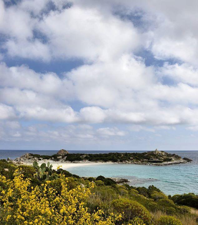 by http://ift.tt/1OJSkeg - Sardegna turismo by italylandscape.com #traveloffers #holiday | Noi siamo sardi Noi siamo spagnoli africani fenici cartaginesi romani arabi pisani bizantini piemontesi. Siamo le ginestre d'oro giallo che spiovono sui sentieri rocciosi come grandi lampade accese. Siamo la solitudine selvaggia il silenzio immenso e profondo lo splendore del cielo il bianco fiore del cisto. Siamo il regno ininterrotto del lentisco delle onde che ruscellano i graniti antichi della rosa…