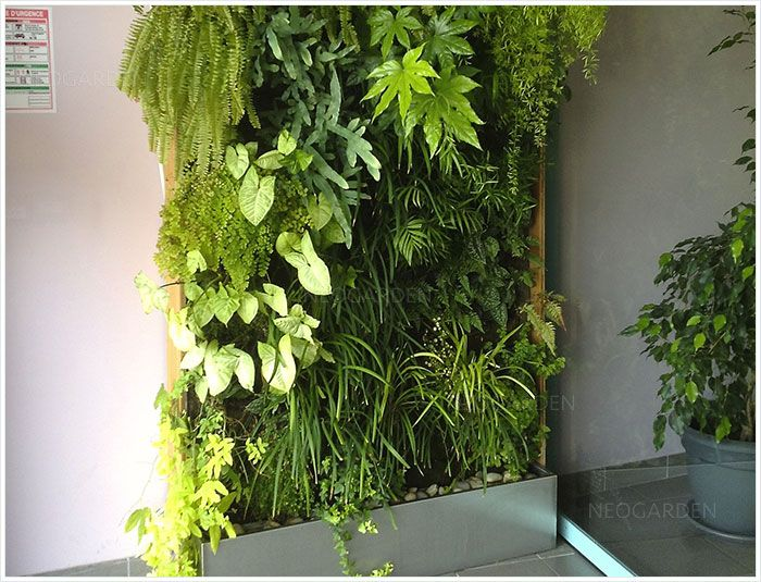 108 best images about mur v g tal green wall on pinterest gardens green. Black Bedroom Furniture Sets. Home Design Ideas