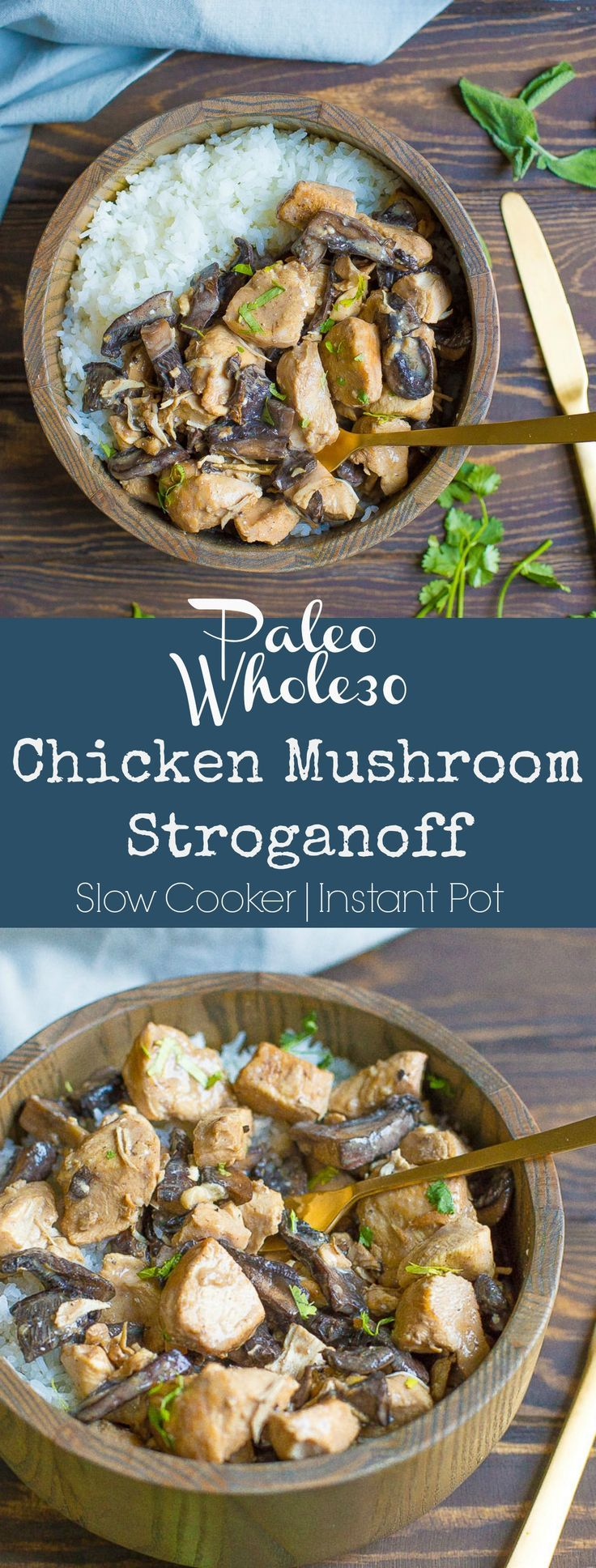 Set it and forget it with this simple Chicken Mushroom Stroganoff! Delicious flavor and creamy taste without dairy! So easy and sure to be loved by the whole family.