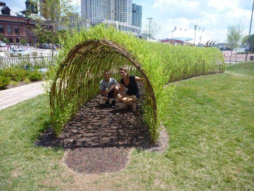 Children's Garden Willow Tunnel. Pierce's Park in Baltimore, Maryland.