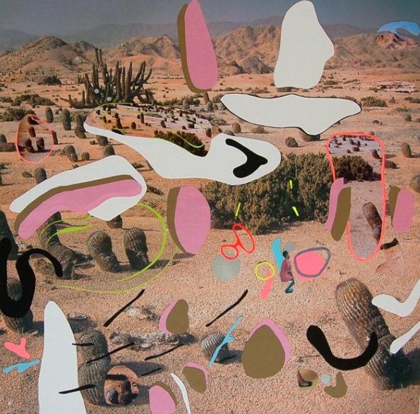Virginia Echeverria's collages