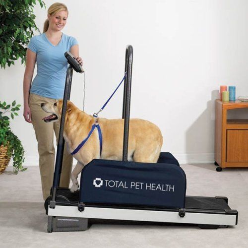 Big Sale  Total Pet Health Exercising Dog Treadmill