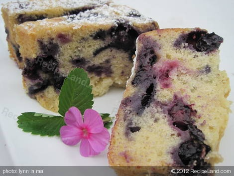 Photo of Melt in Your Mouth Blueberry Cake