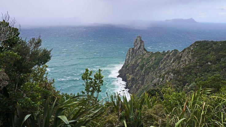 Te Whara Track