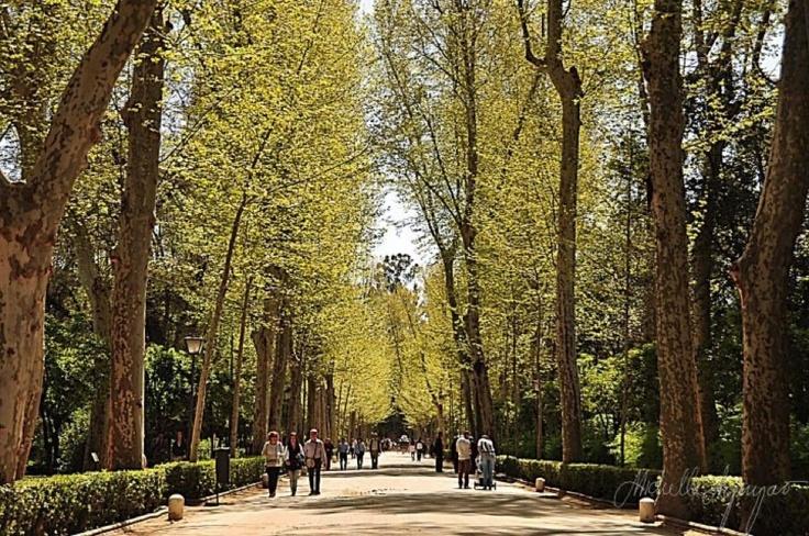 Parques de la Maria Luisa, Seville