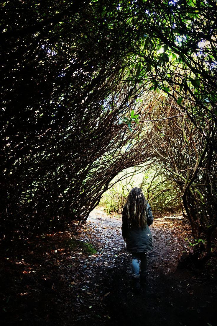 Magic forest #girl #dreadlocks #beautiful #nature #trees #wonderland