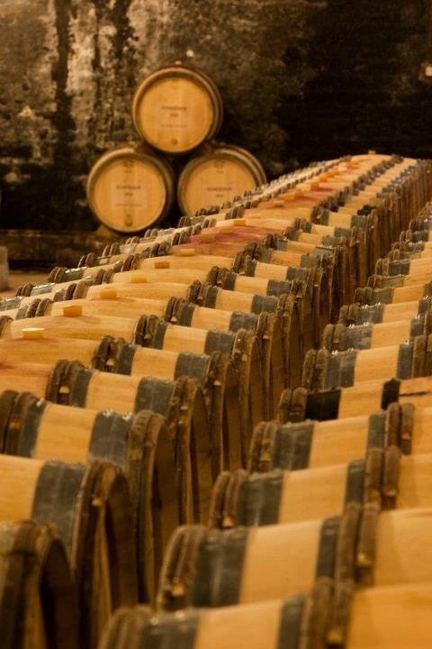 Profitez de votre passage en Bourgogne pour visiter des caves. Endroit authentique et beau vous serez conquis ! #Bourgogne #france