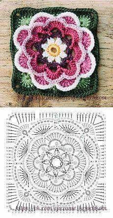 цветок Фриды
