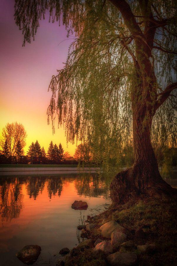 Sunset  -The Rideau Canal - Ottawa, Canada