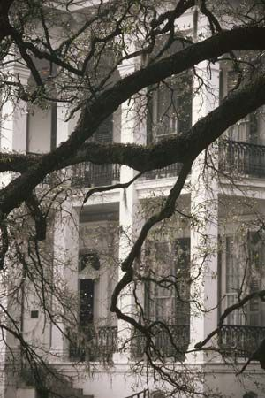 """The deep South dead since 1865 and peopled with garrulous outraged baffled ghosts...""""  - William Faulkner, Absalom, Absalom!"""
