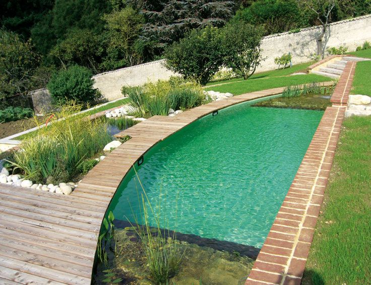 unusually shaped swimming pool, natural filtration system and decked walkway