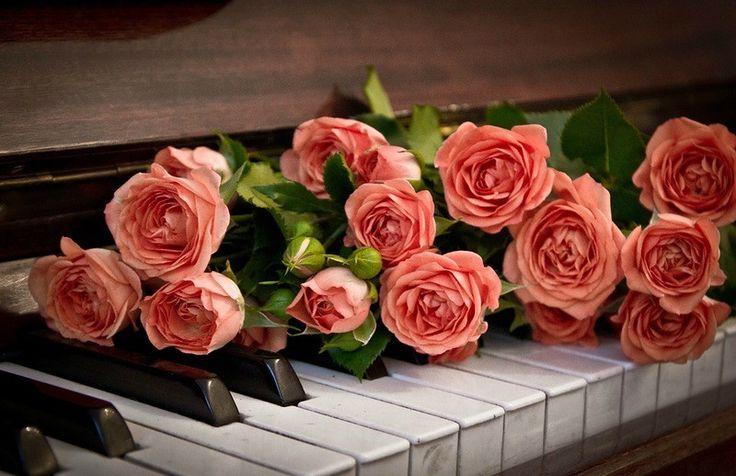 Открытки с днем рождения рояль, картинки прикол