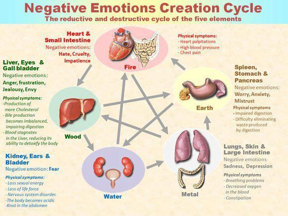 Emotions are stored in our body, when we choose to hold onto anger, frustration, jealousy or impatience those emotions negatively impact our physical well being. Questions to ask yourself next time you have an ache, pain or feel ill: What emotions am I storing in this part of my body? Am I holding on to something in my life that is no longer serving me today? What is my body trying to tell me?