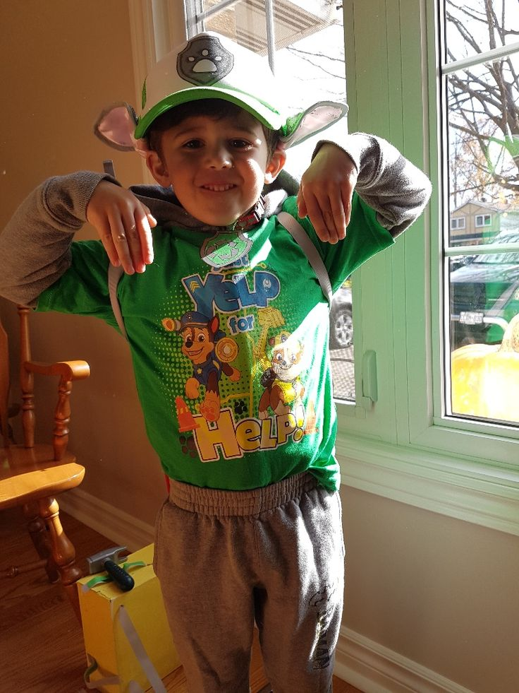 Paw Patrol Rocky diy costume. Grey hoodie under green paw patrol tshirt. Grey sweatpants. Hat was white and green and drew logo. Ears are Halloween rabbit ears painted grey and attached to the hat.
