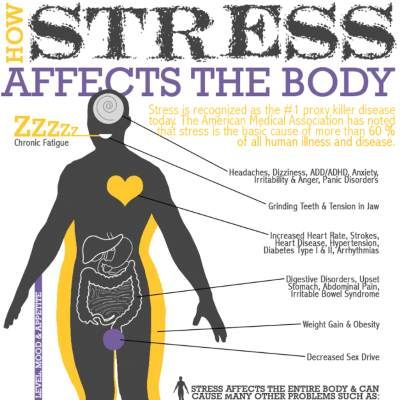 How Stress Affects Your Body. See what happens to your body when you are stressed & how to handle stress.