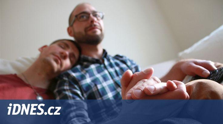 Názory českých politiků na možnost, že by i čeští gayové a lesby mohli uzavírat manželství, nejen registrované partnerství, zjišťovala Koalice za manželství pro gaye a lesby. Zároveň oznámkovala strany, jež kandidují do Sněmovny. Jako nejvstřícnější vyhodnotila Zelené, Piráty a ANO. Na opačném pólu skončily TOP 09, ODS, KDU-ČSL a SPD.