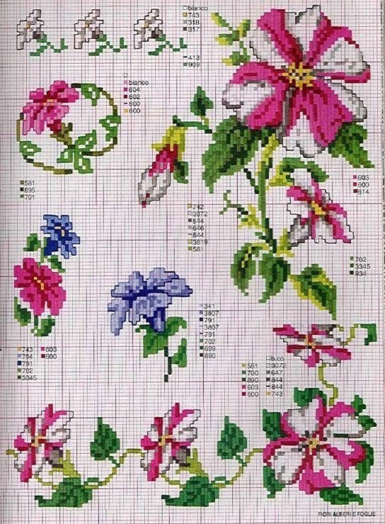 Gallery.ru / Фото #95 - Ботаника-цветы - irislena