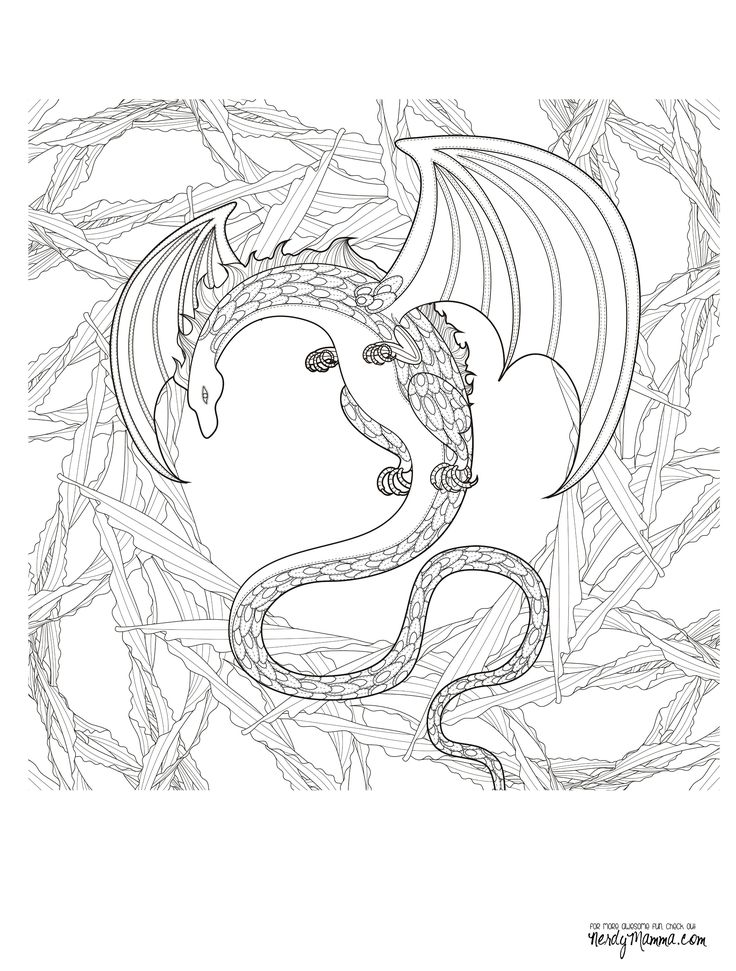 lizard dragons coloring pages - photo#49