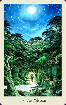 Wildwood Tarot - a new deck for me, but  a very popular one