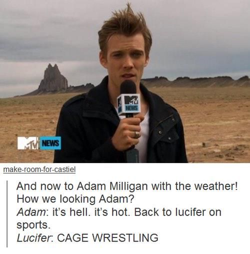 "I can't stop laughing. I love everything about this. ""CAGE WRESTLING!"""