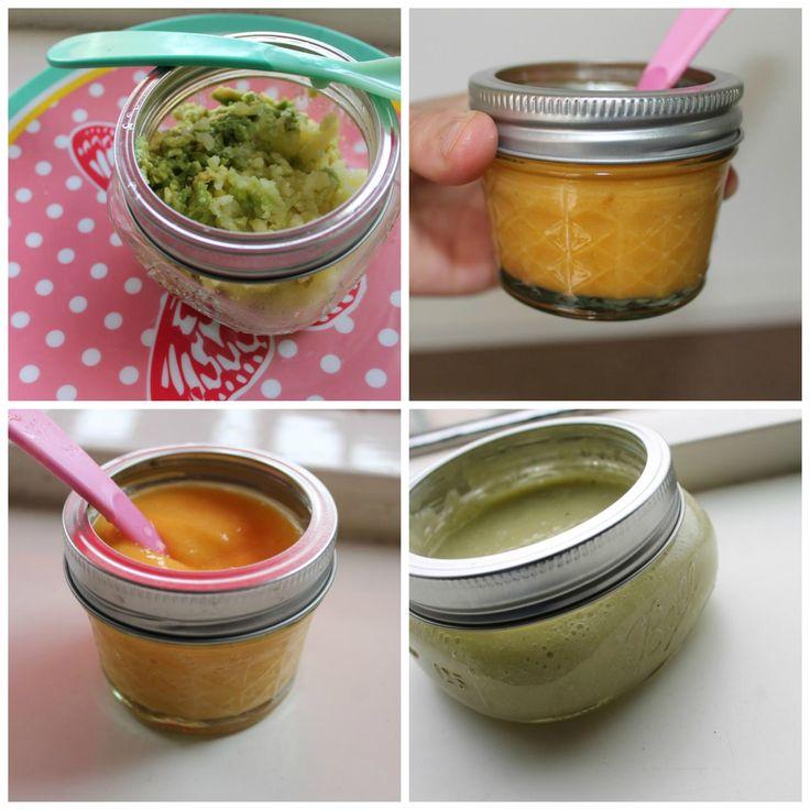 Zelf babyvoeding maken: Maak zelf het groentehapje, fruithapje, een heerlijk ontbijtje en andere maaltijden voor je kindje vanaf 4 maanden