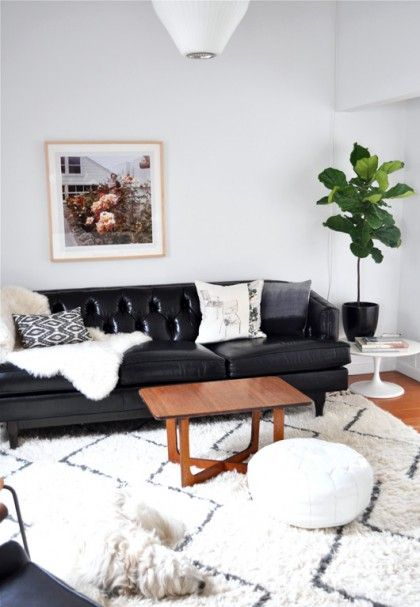 Rug, plant on table, a black couch that somehow blends away into a white room