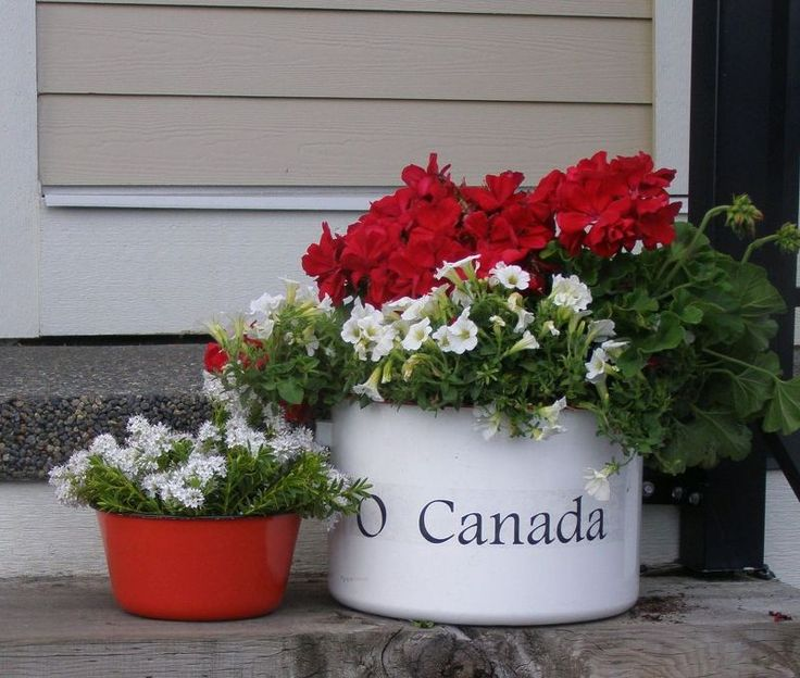 o canada canada day porch planter, container gardening, flowers, gardening