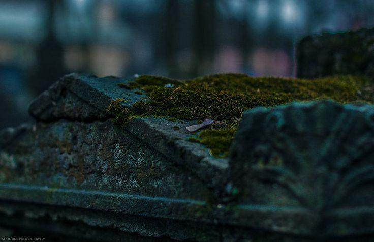 Cemetery_10 by Aderhine.deviantart.com on @DeviantArt