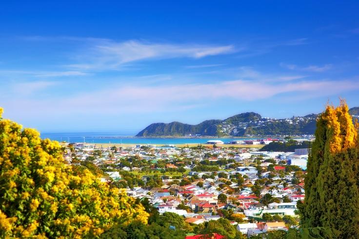 Wellington. #Wellington #NewZealand #Travel