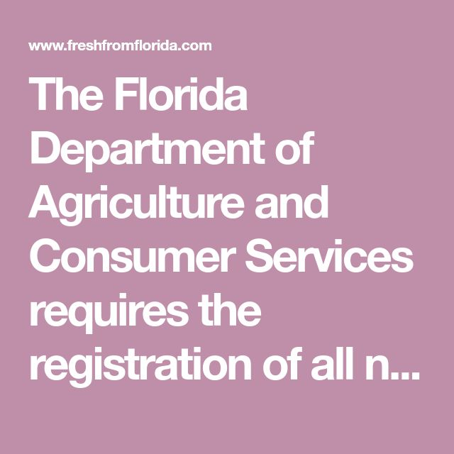 The Florida Department of Agriculture and Consumer Services requires the registration of all nurseries (as well as nursery stock dealers, agents, and plant brokers) and conducts inspections of nursery stock throughout the year. Inspections of plants in nurseries substantially increases the probability of intercepting or detecting a serious pest before it becomes established or widely distributed. Learn more about registering or renewing nursery registrationshere.