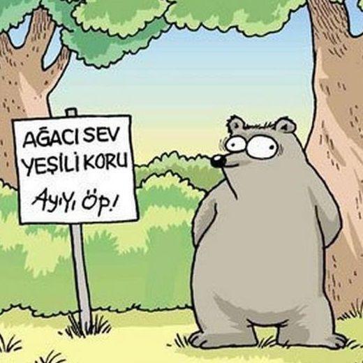 DokunaklıSonlar  Karikatür komedi dram