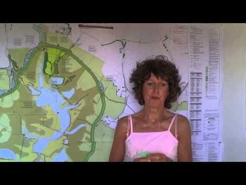 ▶ Medmerry Flood Defence Scheme - YouTube