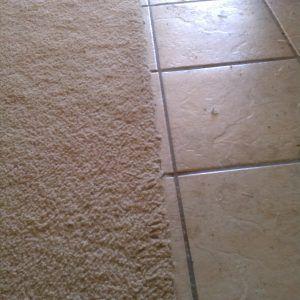 Best 25+ Carpet to tile transition ideas on Pinterest ...