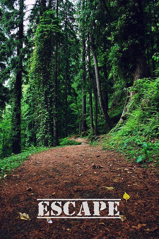 kasol_kheerganga_travel_photographer_avnish_aditi_09