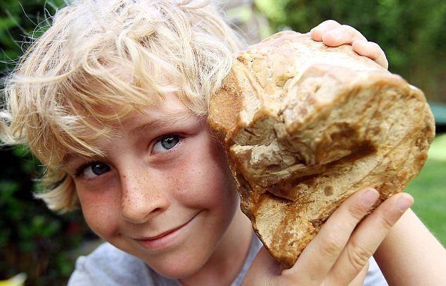 En 2012, un niño encontró vómito de cachalote (ámbar gris) por un precio de 50.000 euros. El joven británico se encontró una piedra amarilla de unos 800 gramos en una playa. Tras unos análisis se comprobó su asombroso valor para perfumería