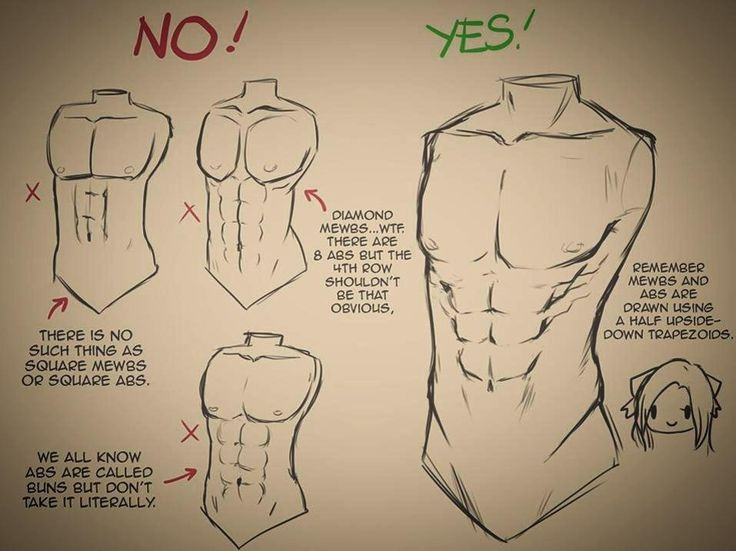 How to draw a male upper body part