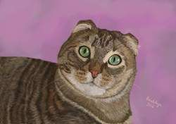 Bobbi, the cat portrait, digital media. Digital art, made to order. Art as gift. Custom made art. Printable custom made art for mugs, t-shirts, journals, home decor etc.