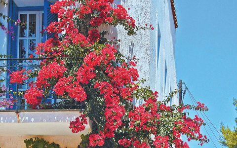 Colours Of Greece Chora in Kea Island Cyclades Greece Aegean Sea Mediterranean Sea
