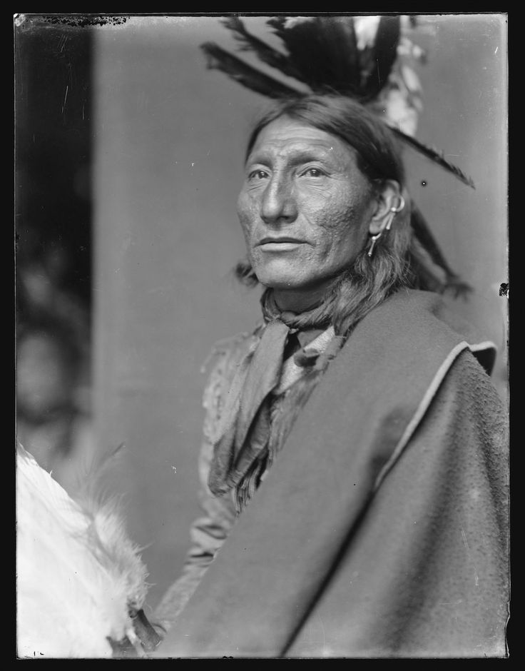 Whirling Horse, American Indian