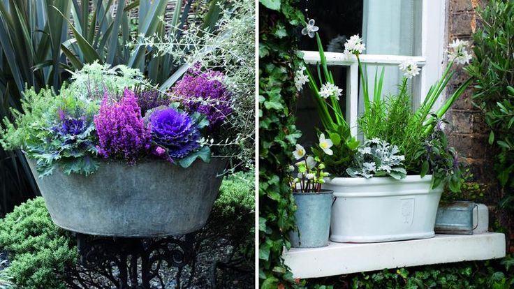 Les 25 meilleures id es de la cat gorie jardini res fleuries sur pinterest jardini res de - Quoi planter en hiver ...