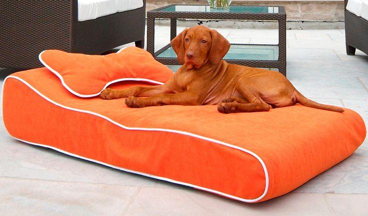 17 best ideas about outdoor dog beds on pinterest dog. Black Bedroom Furniture Sets. Home Design Ideas