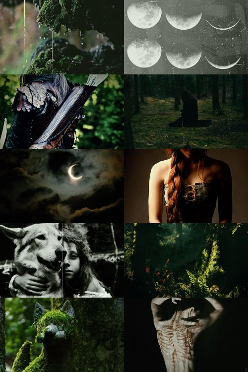 Arcane Huntress Aesthetic ; requested by @sarastarbreeze ...