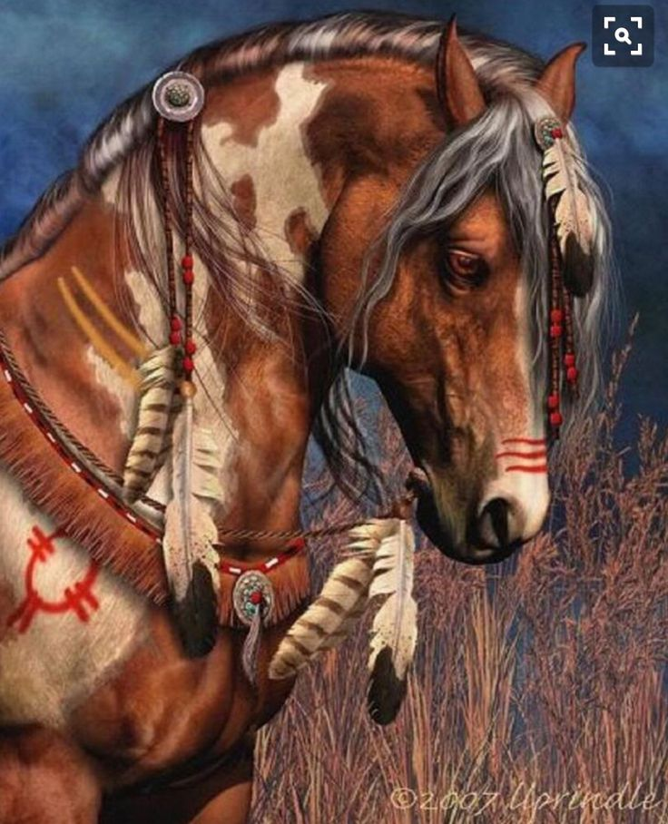 The 25+ best ideas about Indian Horse Tattoo on Pinterest ... Paint Horse Tattoos