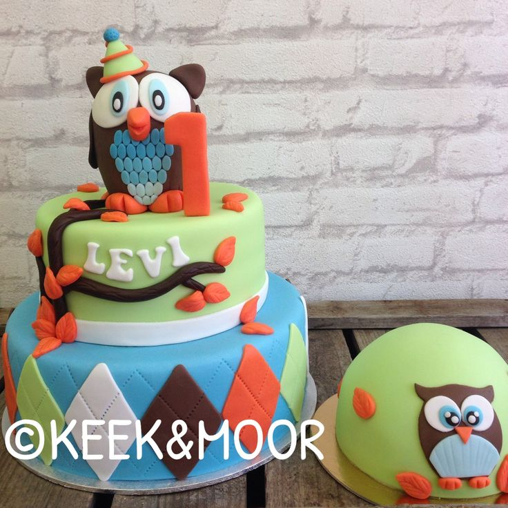 Owl cake for a boy's first birthday