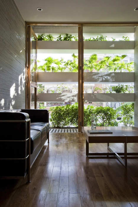 Contemporarty room with interesting plant wall window shelves